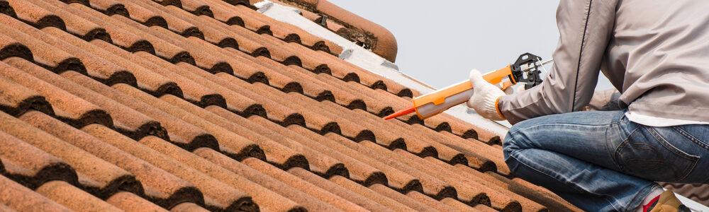 Les tuiles pour une toiture à faible fente